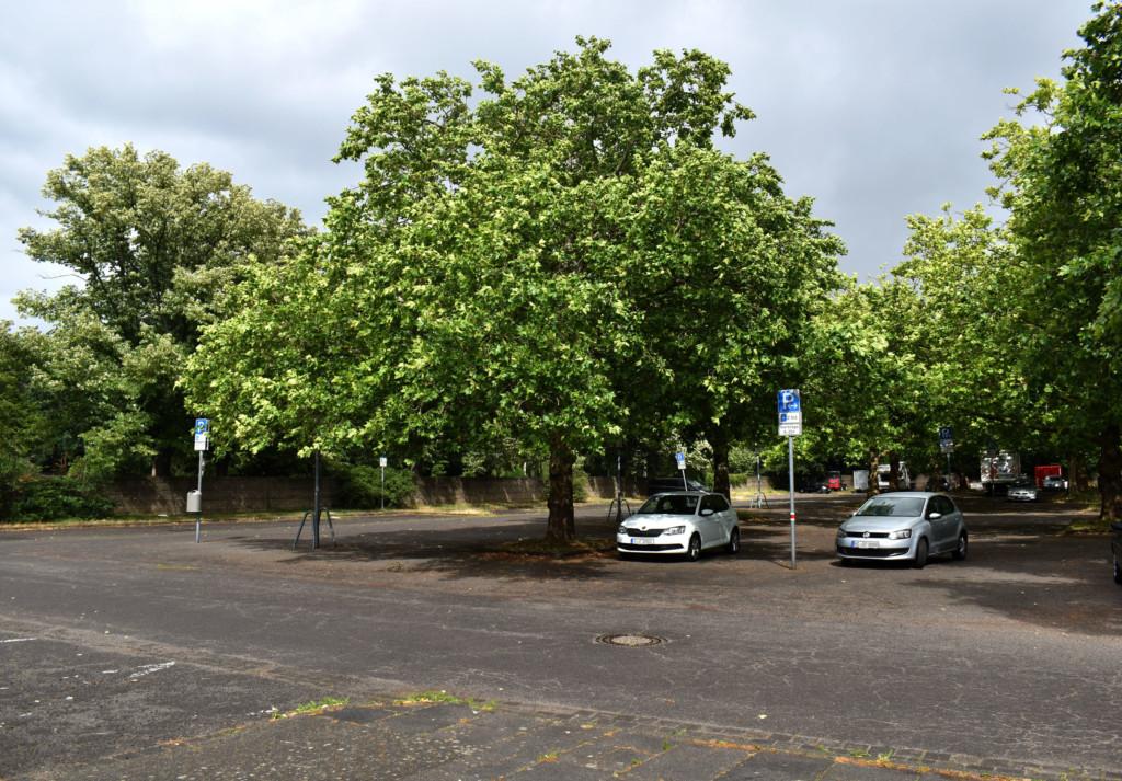Nach dem Vorschlag der SPD könnte am Stadtfriedhof ein Par & Ride-Parkplatz angelegt werden.